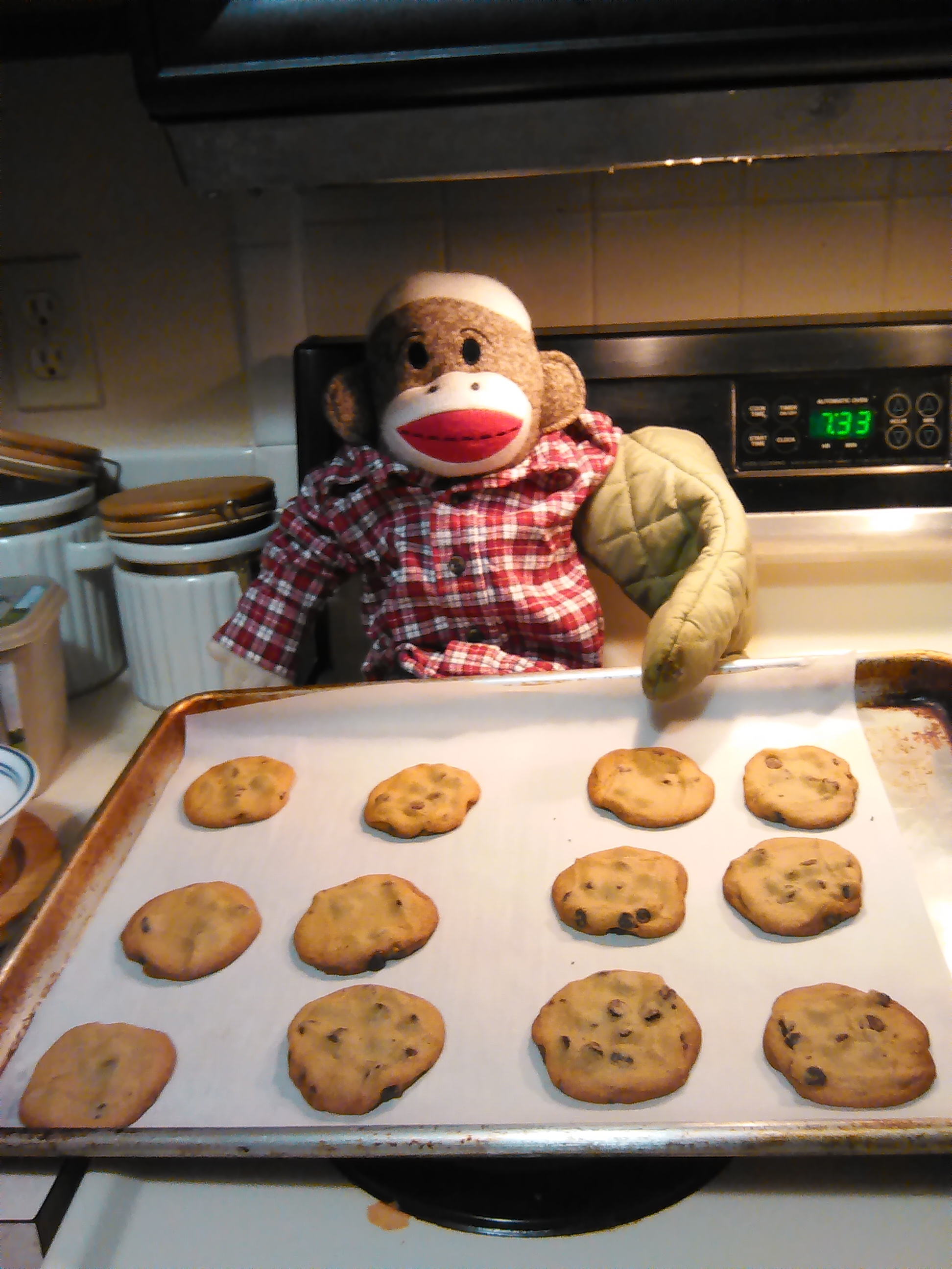 Sock Munkee baking cookies
